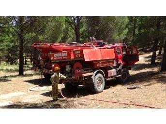 Kazdağları'nda Sıcaklık Alarmı