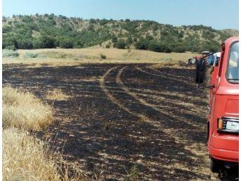 Sungurlu'da 20 Dönüm Ekili Arazi Kül Oldu