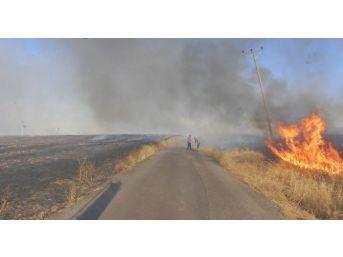 Anız Yangını Nedeniyle Direkleri Yanan Köyler Elektiriğe Kavuştu
