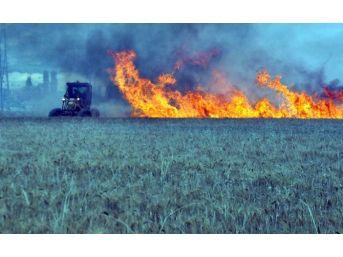 Buğday Tarlalarında Yangın