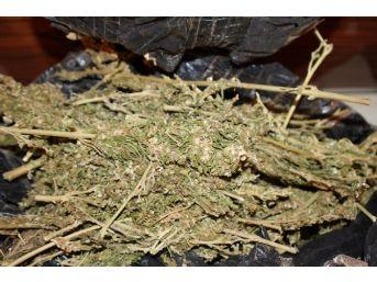Gaziantep'te 40 Kilo Esrar Ve Kaçak Sigaralar Ele Geçirildi