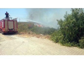Didim'deki Yangın Sitelere Sıçramadan Söndürüldü