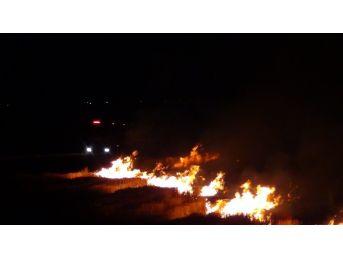 Diyarbakır'da Anız Yangını Vatandaşları Korkuttu