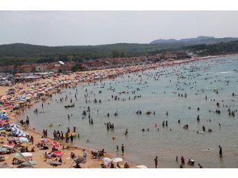 Kocaeli Plajları Tıklım Tıklım