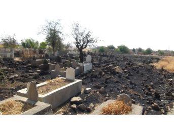 Batman'da 300 Yıllık Mezarlıkta Yangın Çıktı