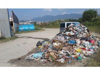 Belediye Sokaktan Topladığı Çöpleri Yine Sokağa Döktü