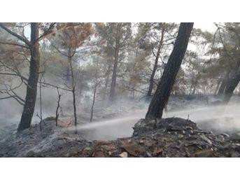 Gazipaşa'da Bir Günde 4 Yangın