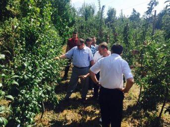 Kaymakam Serkan Keçeli'den Tarımsal Alanlara Ziyaret
