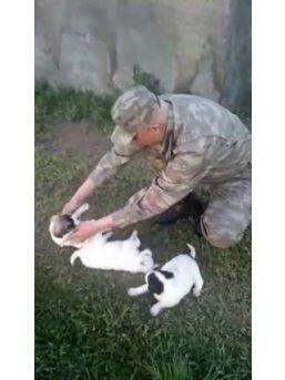 Şehit Binbaşının Hayvanları Severken Çekilen Görüntüleri Ortaya Çıktı