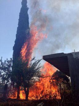 Antalya Kırcami'de Makilik Alanda Yangın (1)