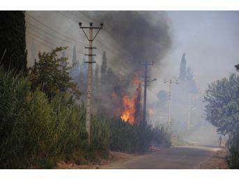 Antalya Tarım Arazisindeki Yangın Kontrol Altına Alındı