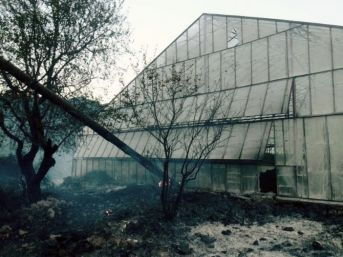 Gazipaşa'da Yangın