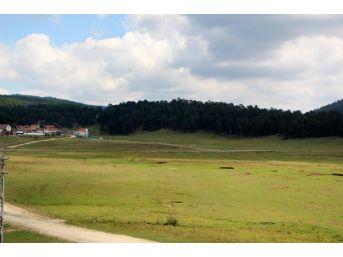 51 Bin Hektarlık Yeşil Alanın Imara Açılmasına Chp'li Özcan'dan Sert Tepki