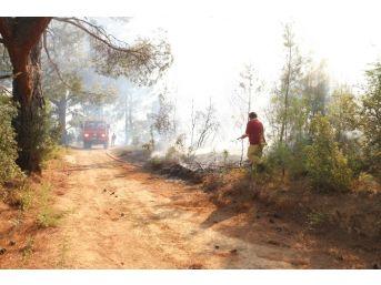 Mut'daki Orman Yangını Kontrol Altına Alındı