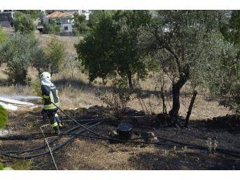 Seydikemer'de Alevler Yerleşim Alanına Dayandı