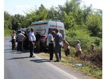 Tarım Aracı Devrildi, Anne Öldü, 5 Çocuğu Yaralandı