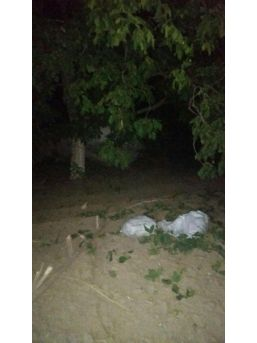 Ağaçtaki Cevizi Çalanlardan Biri Yakalandı
