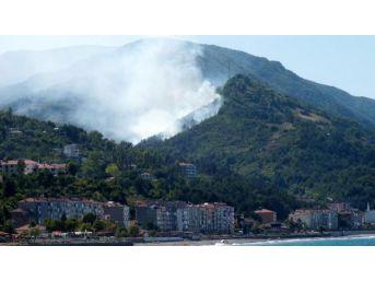 İnebolu'da Orman Yangını (1)