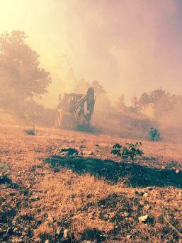 Mut'ta Orman Yangını Korkuttu