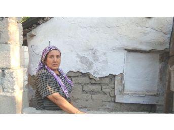 (özel Haber) Baraka Evi Bakımsızlıktan Yıkılmak Üzere Olan Şehit Ailesinin Sitemi