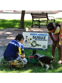 Kepez'de Sokak Hayvanları İçin 30 Su İstasyonu