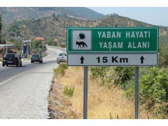 Yaban Hayvanları Için Geçiş Koridoru Isteği