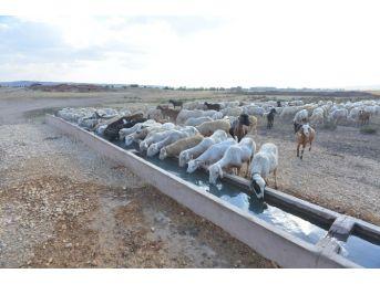 Su Sorunu Yaşayan Mahallelere Güneş Enerjisi İle Çözüm