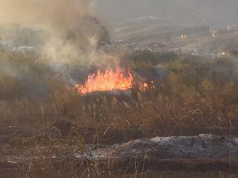 Çaycuma'da Arazi Yangını Korkuttu