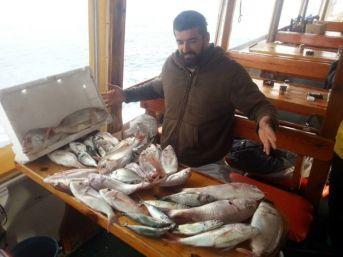 Büyük Balık Avı Yarışması 21 Kasım'da