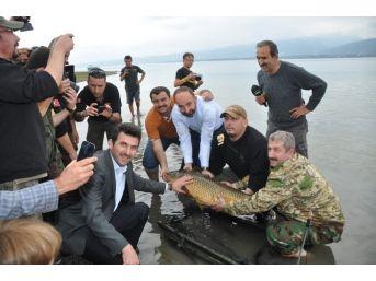 Olta Balıkçıları Kartepe'de Buluşacak