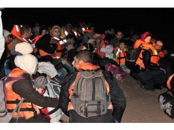Didim'de 60 Suriyeli Ölüme Terk Edildi
