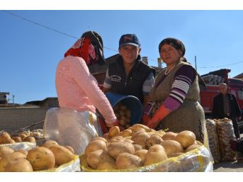 Niğde'de Patatesin Bolluğu Üreticiyi Sevindirmedi