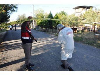 Jandarma Sır Hırsızlıkları 'polenle' Çözdü