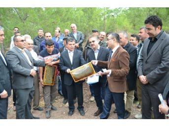 Bozyazı'ya İki Yeni Bal Ormanı