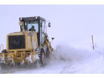 Ardahan'da Karla Mücadele Devam Ediyor