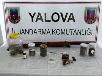 Yalova Jandarmasından Uyuşturucu Ve Kaçak Mazot Operasyonu