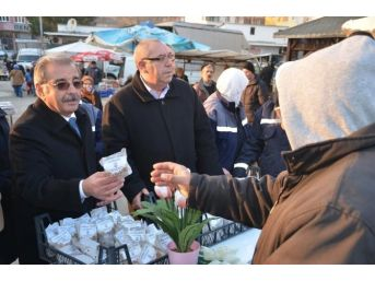 Gelibolu'da 6 Bin Lale Soğanı Dağıtıldı