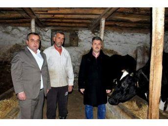 Orköy Kredileri Üretecinin Yüzünü Güldürüyor