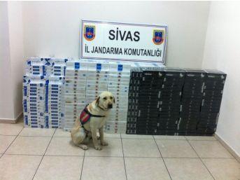 Sivas'ta 15 Bin Paket Kaçak Sigara Ele Geçirildi