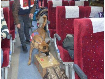 'atik' Ve 'görev' Yolcu Treninde Arama Yaptı