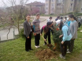 Okullarda Ağaçlandırma Çalışmaları Başlıyor