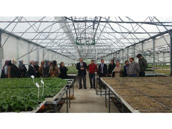 Çaycuma İlçe Gıda Tarım Ve Hayvancılık Müdürlüğünden Eğitim Atağı
