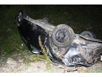 Otomobil Başıboş Eşeklere Çarptı: 1 Yaralı