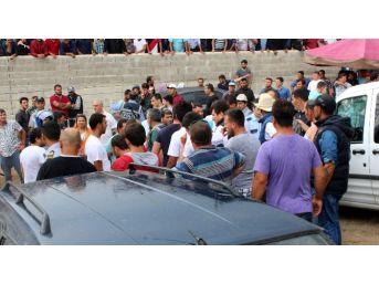 Yüzlerce Kişi Birbirine Girdi, Arena Ringe Dönüştü