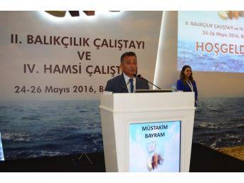 Balığın Yüzde 70'i Karadeniz'de Avlanıyor