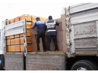 Erzincan'da 99 Bin 500 Paket Kaçak Sigara Ele Geçirildi