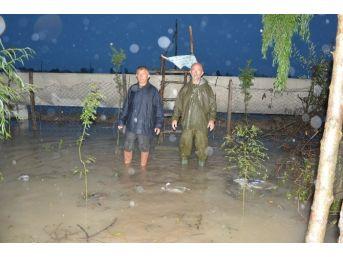 Aşırı Yağış Vatandaşları Mağdur Etti