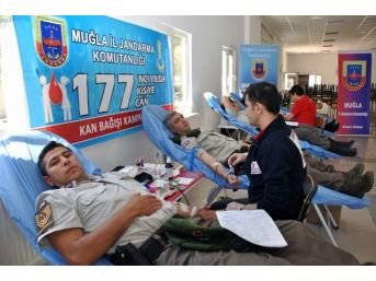 Jandarmanın 177'nci Yılında 177 Kişiye 177 Can