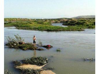 Erciş'te Balık Avlayan Genç Derede Boğuldu