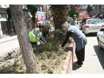 Devrek Belediyesinden Çiçeklendirme Çalışması